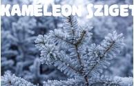 Eleségállatok téli postázása - előnézeti képe